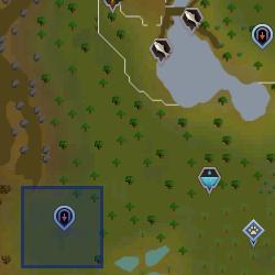 Twig (human) location