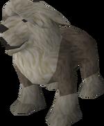 Sheepdog puppy (grey) pet