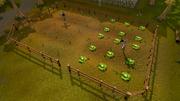 Rimmington field