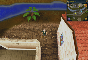 Compass clue Falador north of Wayne's Chains