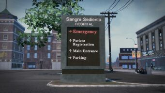 Sangre Sedienta Hospital (4)