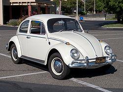 File:Ant - real life Volkswagon Beetle.jpg