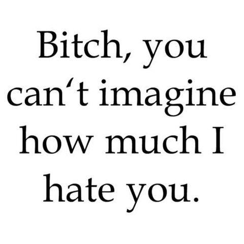 File:Bitch you can't imagine.jpg