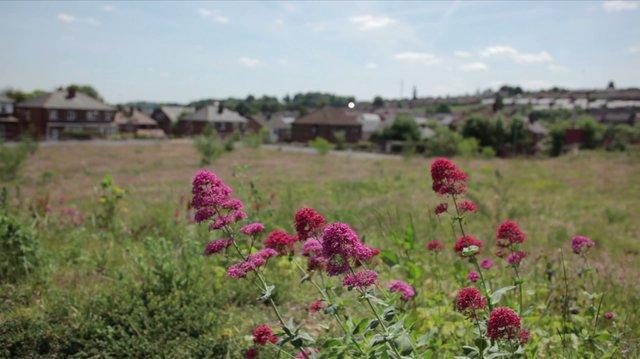 LILAC Cohousing Documentary