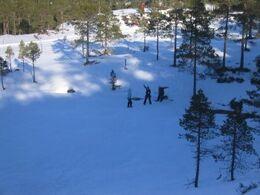 Norwegian winter2