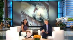 Kerry Washington on Her Adorable Dog