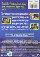 Witch's Ghost DVD back cover