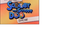 The New Scooby and Scrappy Doo Show