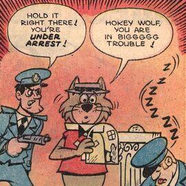 Hokey arrested
