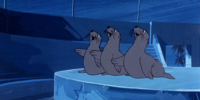 Seals (Scooby's Night with a Frozen Fright)