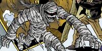 Mummy of King Tookoolforskool