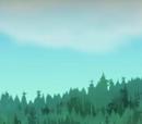 Camp Big Moose