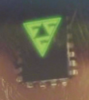 Gideon's microchip