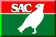 600px Salgueiro