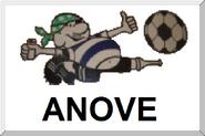 Bandeirinha Anove