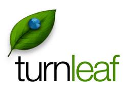 Turnleaf 2