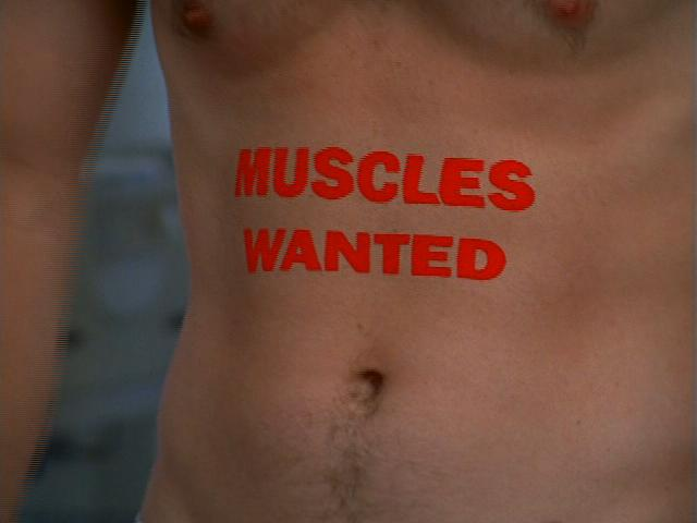 File:7x3 Muscles wanted.jpg