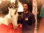7x6 JD and unicorn