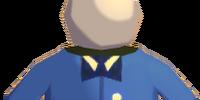 Postman's Uniform