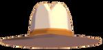 CowboyCostumeHat