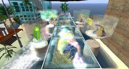 SecretSea aquarium, looking north (09-09)