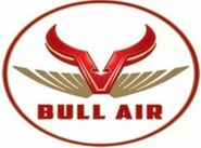 BULL AIR LOGO MINI