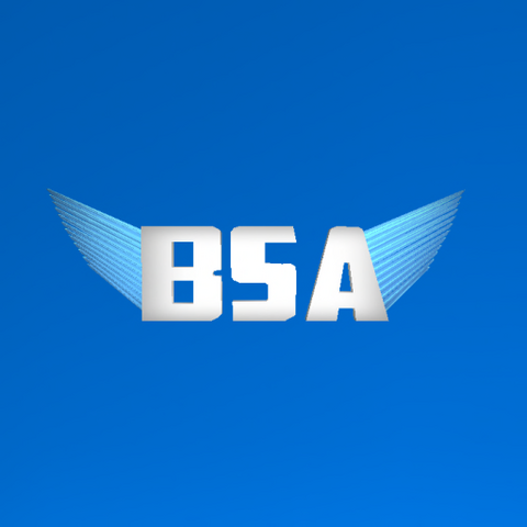 File:BSA LOGO 2.png