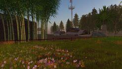 Sparrow Field (04-2012)