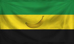 San Carlos Flag