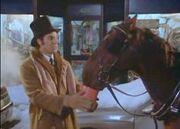 HORSE t240