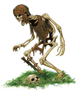 Szkielet.jpg