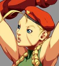 535px-Character Select Cammy