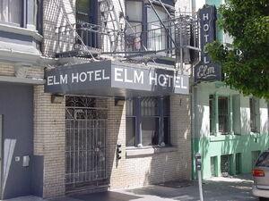 Elm Hotel detail
