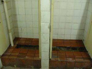 Squat-toilet-trough