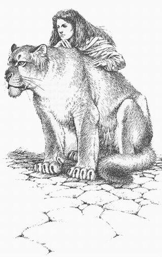 Shannara Chronicles Where Is Cogline S Cat