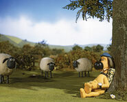 Bitzer under tree