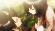 Mikasa and Eren VN