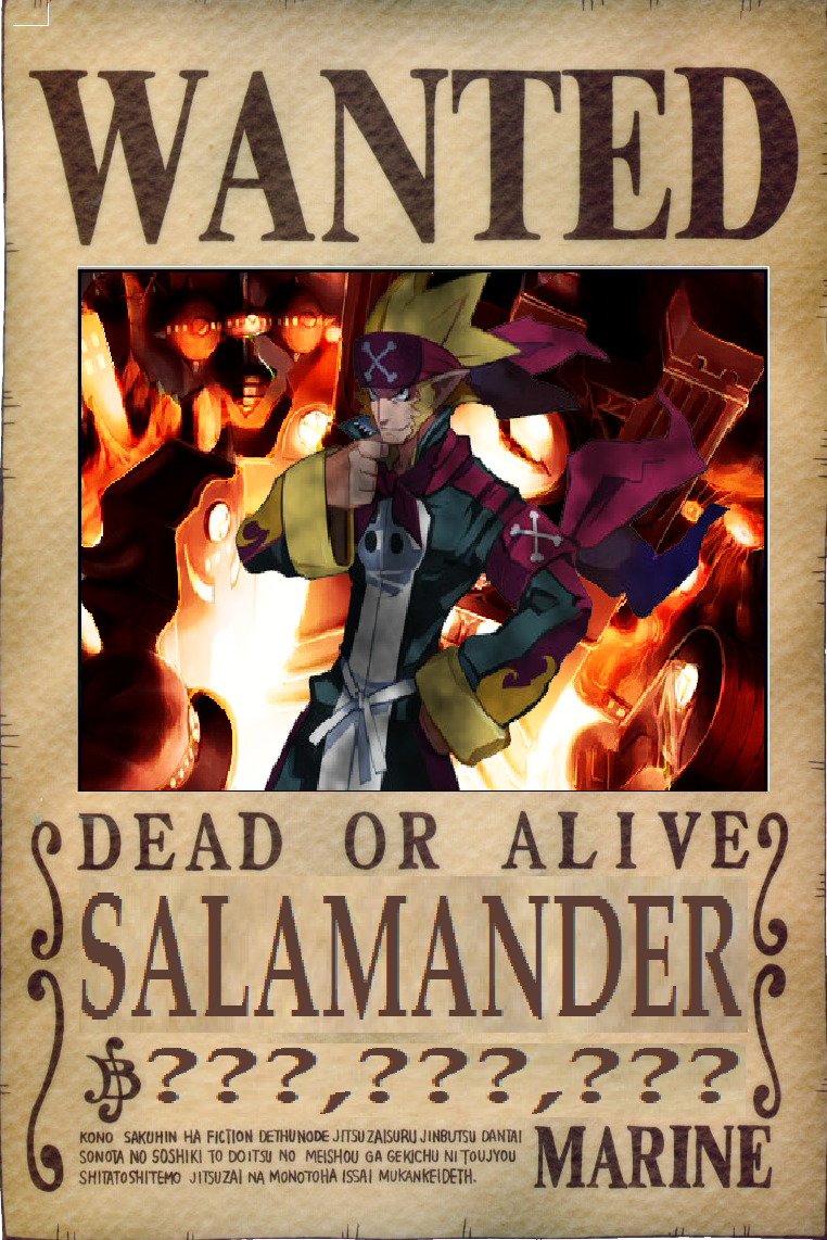 Image salamander 39 s wanted one piece ship - One piece wanted poster ...