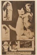 Laurellos-pets-postcard