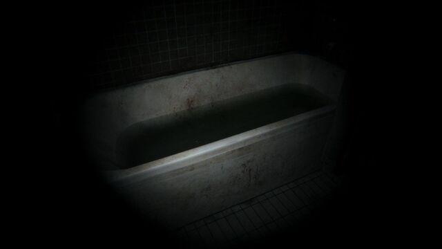 File:P T Bathtub.jpg
