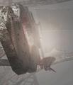 Thumbnail for version as of 08:23, November 21, 2014