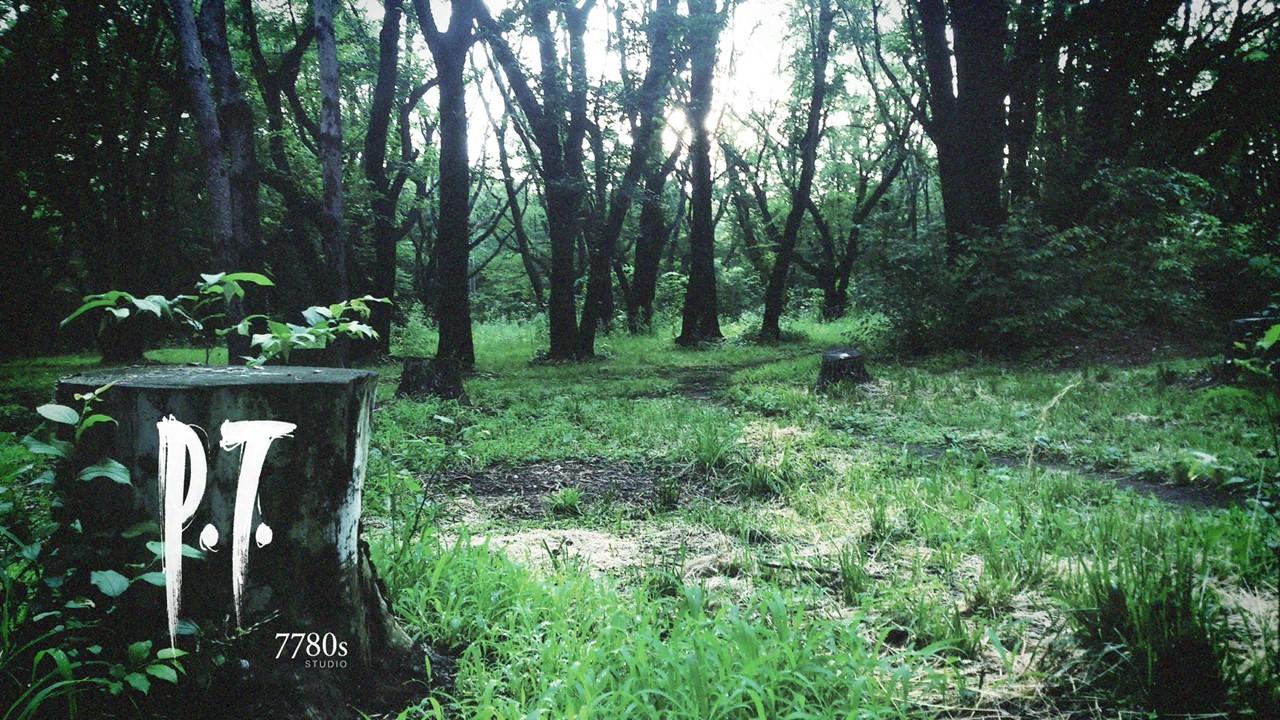 Enlace para vincular P.T. Silent Hills a tu PSN Latest?cb=20140817043109