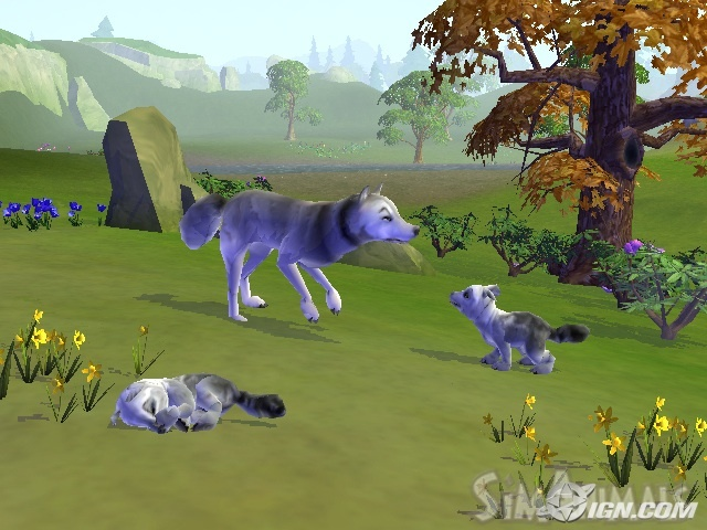 Wolf | Sim Animals Wiki | FANDOM powered by Wikia
