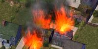 Leaf Burning Ban