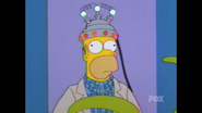 HomerProbe