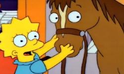 File:Lisa pony.jpg