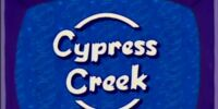 Cypress Creek: A Tale of One City
