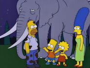 Bart Gets an Elephant 103