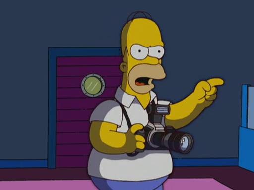 File:Homerazzi 134.JPG