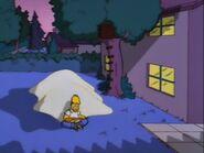 Lisa's Rival 89